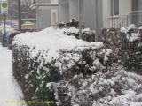 Winter Im Harz Blankenburg 21.12.10 (3).JPG