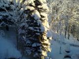 Winter 2010 015.jpg