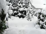 Winter 2009 102.jpg