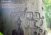 HG88I.jpg