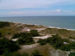 Ostseeküste bei Zingst (2).JPG