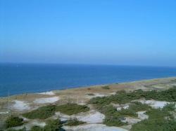 Ostseeküste bei Zingst (6).jpg