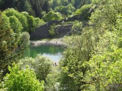 Am blauen See im Harz (5).JPG
