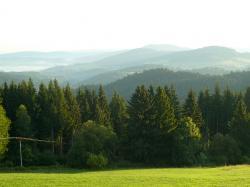 Bild_Natur_5.jpg