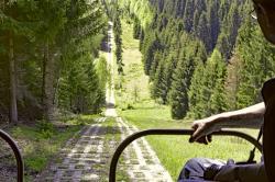 2-Blick aus Robur LO auf Kolonnenweg im Harz.jpg
