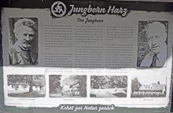 Jungborn Harz-4.jpg