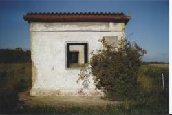 haufeld0011.jpg