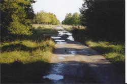 haufeld0023.jpg