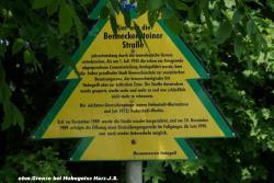 24.6.10 eh.Grenze b.Hohegeiss-Harz (15).JPG