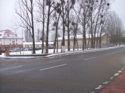 Reste KFZ-Park.jpg