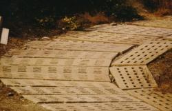 Kolonnenweg Kurvenausbau-k.jpg