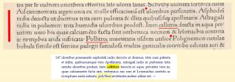 callithrix-callitrix.jpg