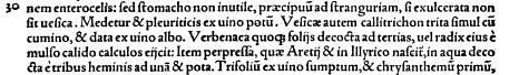 callitrichon_Plinius_A.png