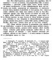 callithrix_Plinius_Detlefsen_3.png