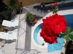 prestige terrace .jpg
