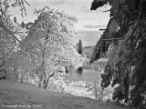 Plitvicer Seen-Erinnerungen aus der Zukunft-6.jpg