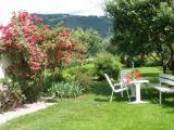 Garten_3.JPG