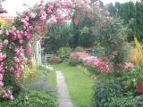 Garten_4.JPG