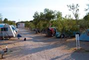 Camp-Zora.jpg