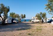 Camp-Zora1.jpg