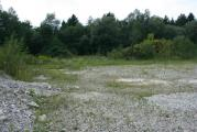 Gailspitz Habitat 24-8-10 E.JPG