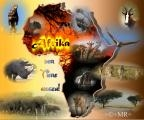 Afrika-008.jpg
