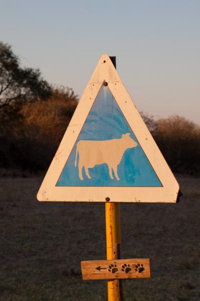 Botswana 2011-0455.jpg