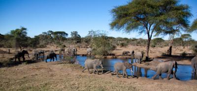 Botswana 2011-2527.jpg