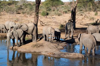 Botswana 2011-2554.jpg