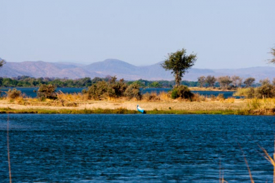 Blick auf dem Zambesi.jpg