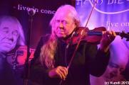 Hans die Geige 30.08.13 Bad Muskau (34).jpg