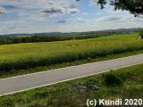 Spaziergang 06.05.19 Galgenberg (10).jpg