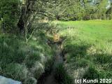 Spaziergang 08.05.19 langes Wasser -Teiche  (2).jpg