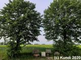 Spaziergang 09.05.20 Feldweg Dreistern (31).jpg