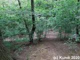 Spaziergang  11. u. 16.05.20 Schanze Seitschen (14).jpg