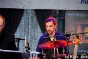 Thomas Stelzer & Bands 29.05.16 Bautzen (29).JPG
