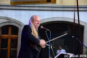 Hans die Geige 19.06.16 Stadtfest Döbeln (5).JPG