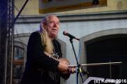 Hans die Geige 19.06.16 Stadtfest Döbeln (51).JPG