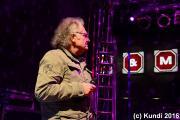 Crazy Birds 17.06.16 Stadtfest Döbeln (103).JPG