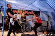 Crazy Birds 29.07.17 Ortrand (86).JPG