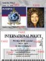 interpol[1].jpg