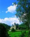 Home of my family Schloss Trifels.jpg