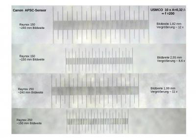 Vergleich raynox 250 -150.jpg