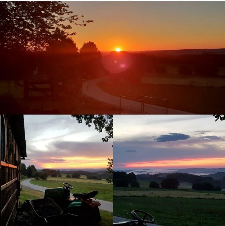 Würrich im Sonnenuntergang