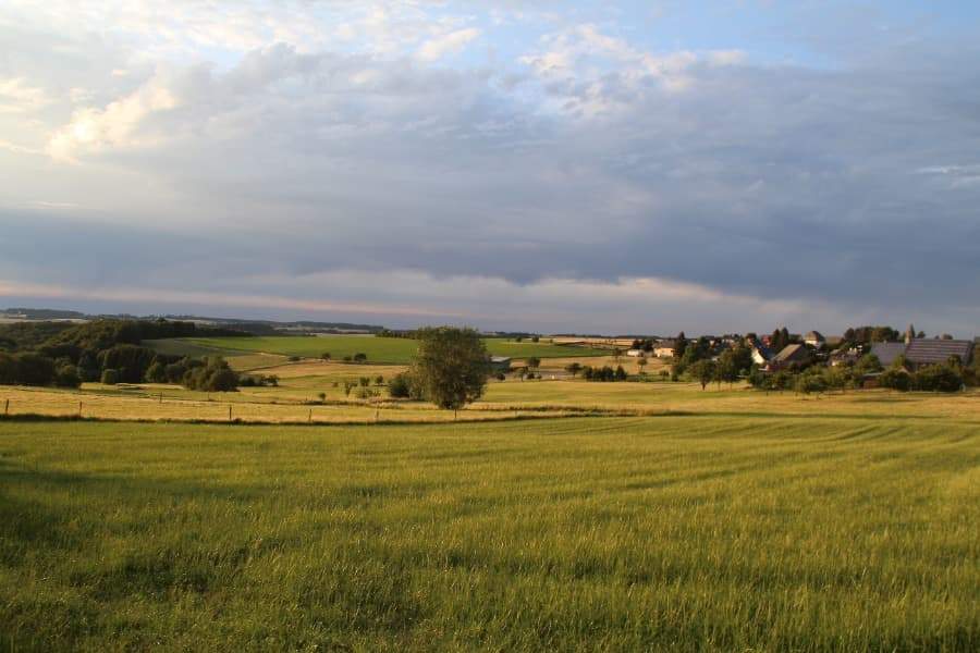 Landschaft im Hunsrück