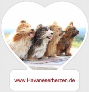 (c) Havaneserherzen.de